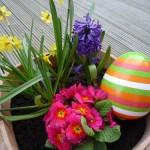 ABACUS Nachhilfe Hamburg und Stormarn wünscht frohe Ostern